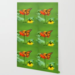 Butterfly on Mexican Sunflower Wallpaper
