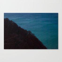 Half half Canvas Print