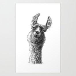 Cute Llama G135 Art Print