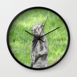 Squirrely Intentions Wall Clock