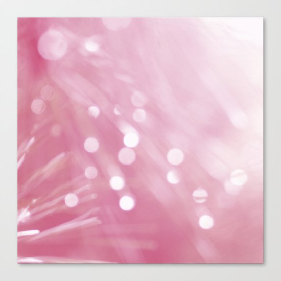 Pink Treasures Canvas Print