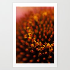Red Petals with Pollen Art Print
