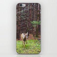 deer 2.  iPhone & iPod Skin