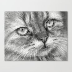 Cat Drawing Canvas Print