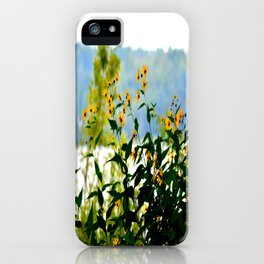 Naturally Clear iPhone Case