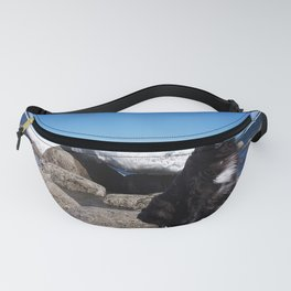 Dog and Iceberg on Windy Day Fanny Pack