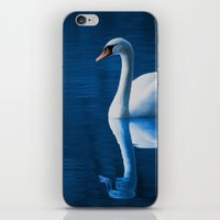swan iPhone & iPod Skins featuring Swan by Spooky Dooky