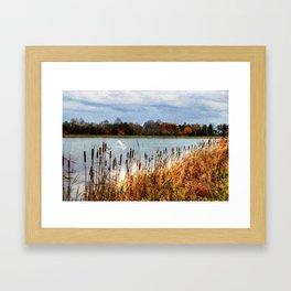 Autumn Swan Framed Art Print