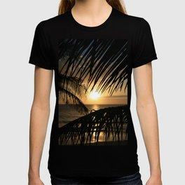 Spirit of the Dance T-shirt