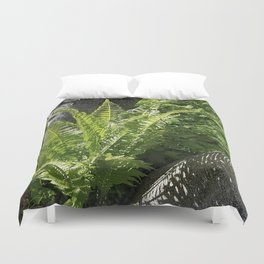 Ferns - the leaves and the shadows - against birch bark Duvet Cover