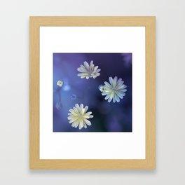 blossom's cosmos Framed Art Print