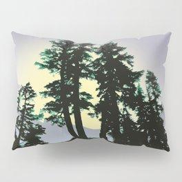 SUMMER EVENING AT HEATHER MEADOWS Pillow Sham