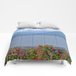 Beauty Near Hope! Comforters