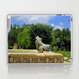 Secret Garden Splashes Laptop & iPad Skin