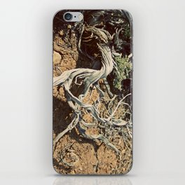 Desert spirit iPhone Skin