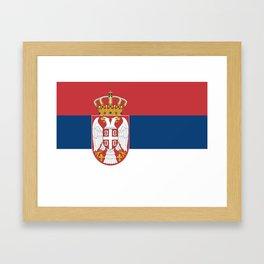 Flag of Sebia Framed Art Print