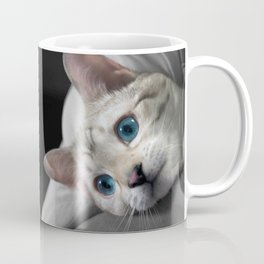 The Blue Ice in the Snow Bengal Cat's Eyes Coffee Mug