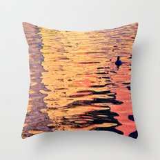 Reflected Colors Throw Pillow