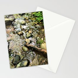 Wildwood Creek Stationery Cards