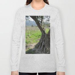 Olive tree in vineyard Long Sleeve T-shirt