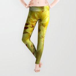 Yellow Bloom. Leggings