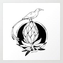 Sugarbird Art Print