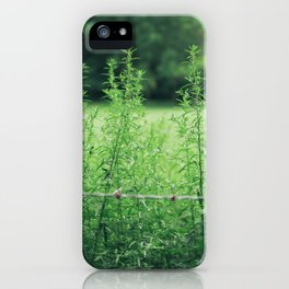 Country Road Take Me Home iPhone Case