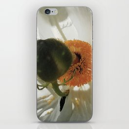 Matilija Poppy iPhone Skin