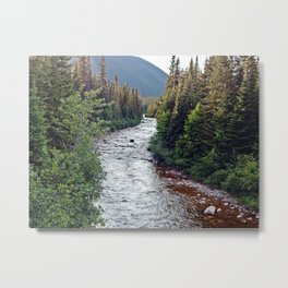 Forest Paradise Metal Print