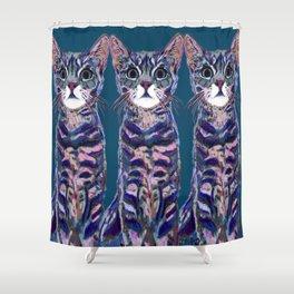 Three Hakus Shower Curtain