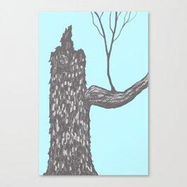 Nut Tree Illustration Canvas Print