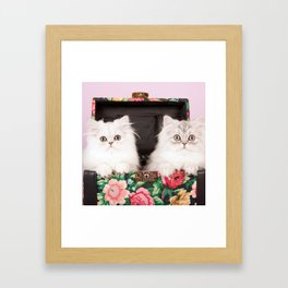 Shabby Chics on the Road Framed Art Print