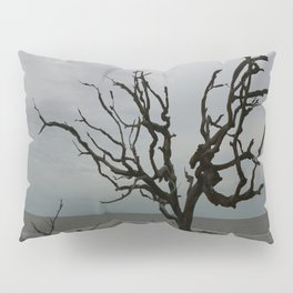 Ghost Tree Beach Pillow Sham