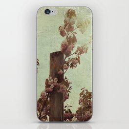 Faded Blossoms iPhone Skin