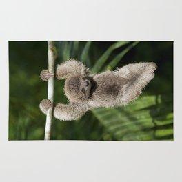 Hanging Around - Baby Three-toed Sloth Rug