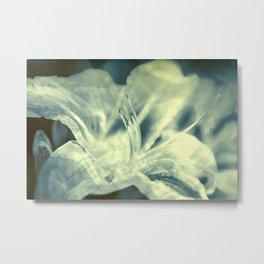 Mystic lily Metal Print