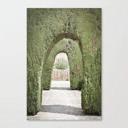 Tree Arches in Granada Canvas Print