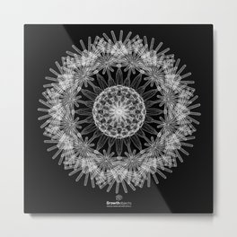 GEOMETRIC NATURE: DANDELION b/w Metal Print