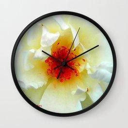 The Christchurch Rose  Wall Clock