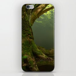 Forest Gates iPhone Skin
