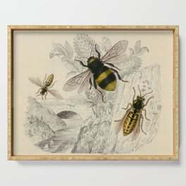 Naturalist Bee And Wasps Serving Tray