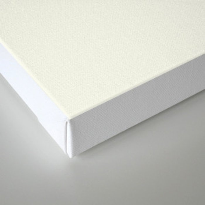 mint chocochip ice cream Canvas Print