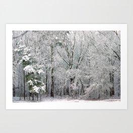 Snowy Swampland Art Print