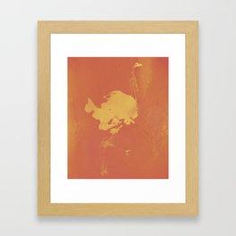 GYLLENE STRUTSEN Framed Art Print