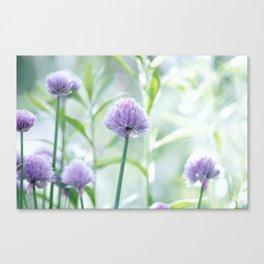 Garden Nature Canvas Print