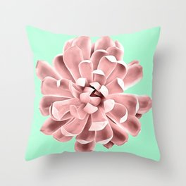 Pink Succulent Plant on Cyan Throw Pillow