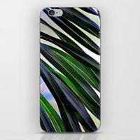 palm iPhone & iPod Skins featuring palm by  Agostino Lo Coco