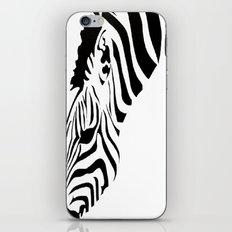Grazing Zebra iPhone & iPod Skin