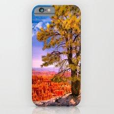 Ponderosa Pine. Bryce Canyon National Park, Utah Slim Case iPhone 6s