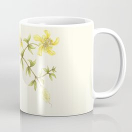 Creosote Flower Illustration Coffee Mug